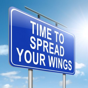 Blue sign that says, 'Time To Spread Your Wings', through coaching, mentoring and counseling in-person, by phone, Skype or FaceTime.