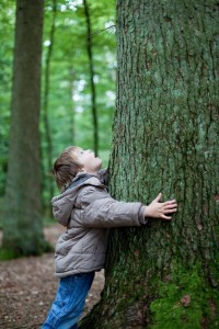 young boy hugging a tree and grounding, earthing himself to nature.